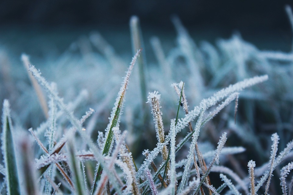 Ondata di freddo