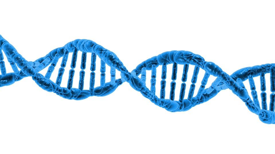 Deplezione del dna mitocondriale: cos'è questa malattia