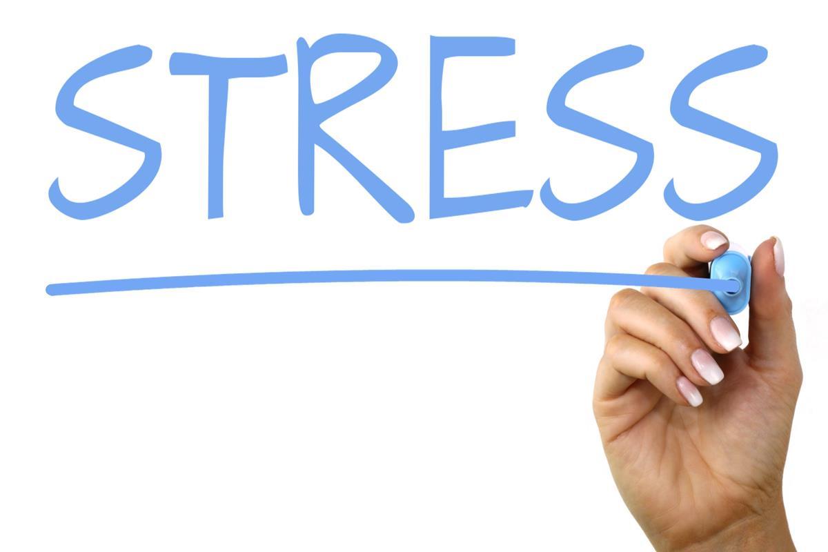 Propensione allo stress
