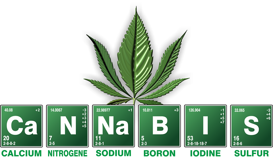 Salute cannabis