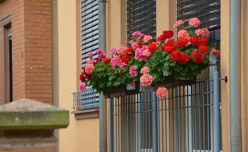 Pulizia quotidiana veranda